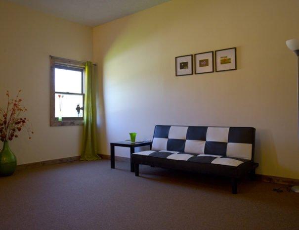 Living Room futon